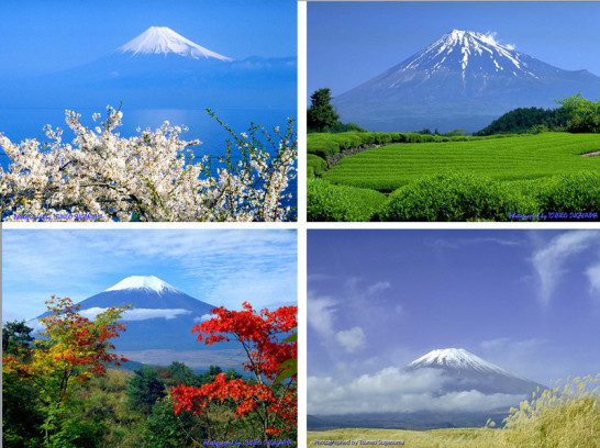 Four Seasons of Japan3