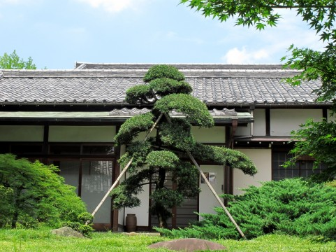 a0002 011800 Japanese style house