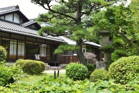 House in japanese style